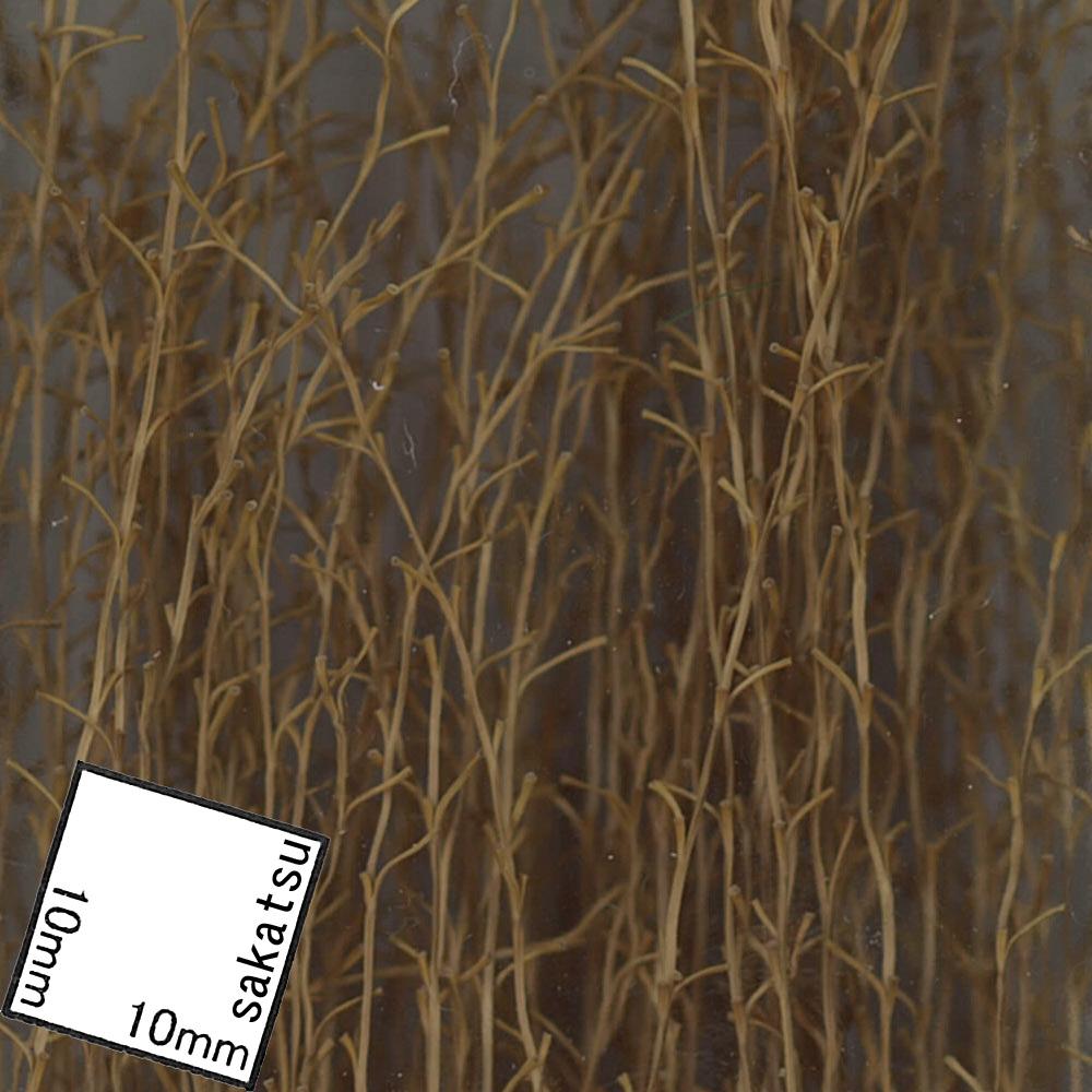 丈の長い草 :ジョーフィクス 素材 ノンスケール 114