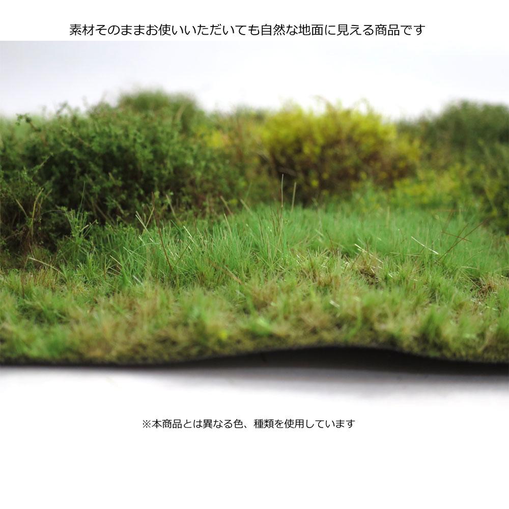 マットタイプ(森林) 全高20mm 夏 パウダー付き :マルティン・ウエルベルク ノンスケール WB-M042