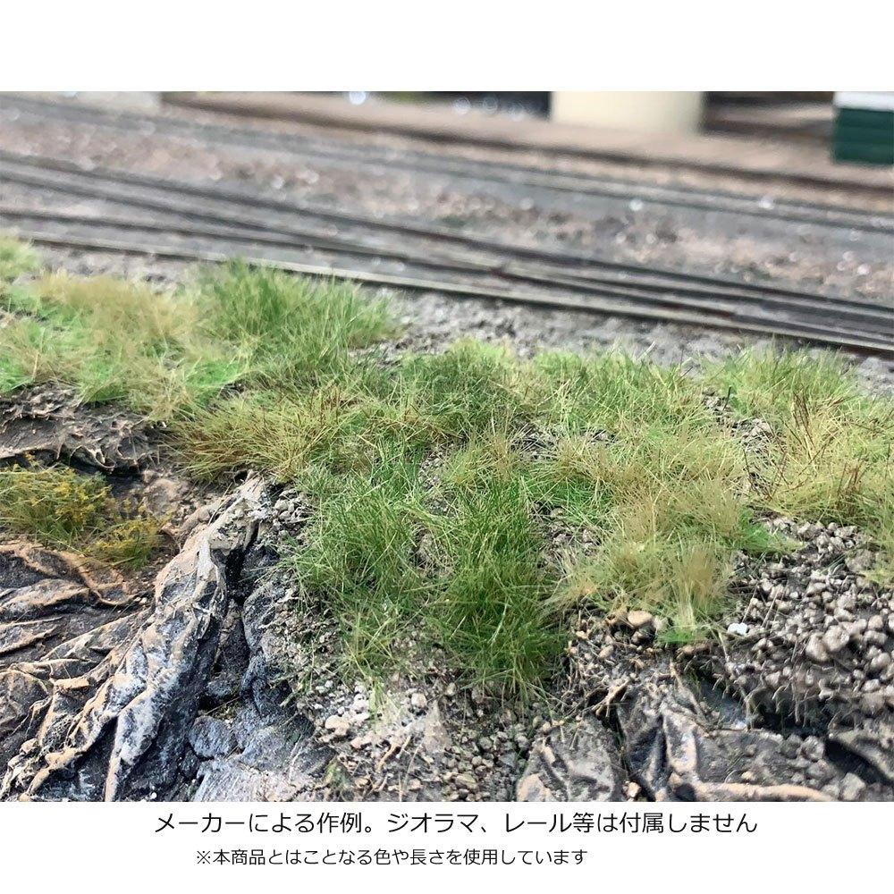 畑 晩夏 全高6mm :マルティン・ウエルベルク ノンスケール WB-P603