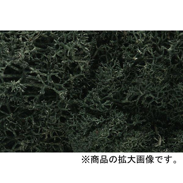 天然素材 【ライケン】  ダーク・グリーン(深緑) :ウッドランド 素材 ノンスケール L164
