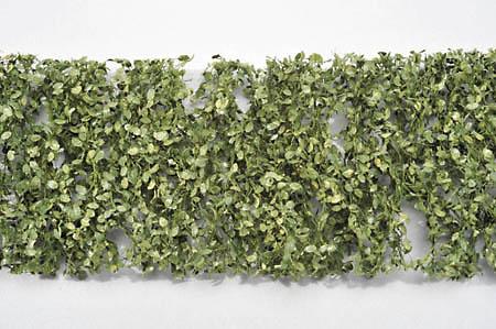 ブナの枝葉(1:45+)-夏の盛り :ミニネイチャー 素材 ノンスケール 920-32