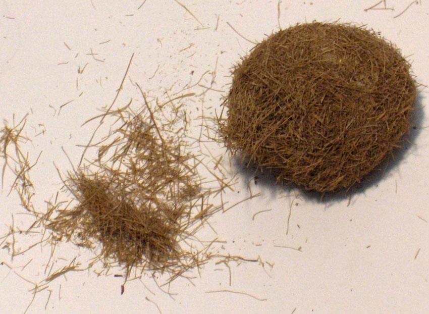 茶色の草 :ジョーフィクス 素材 ノンスケール 122