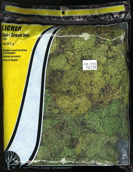 天然素材 【ライケン】  ライト・グリーン・ミックス(新緑) [ラージバッグ] :ウッドランド 素材 ノンスケール L167