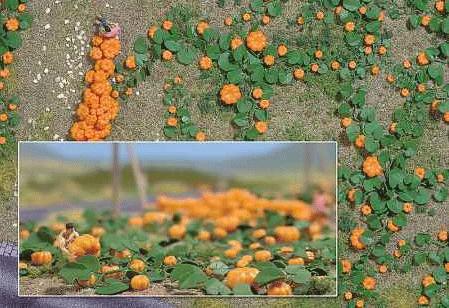 かぼちゃ畑のキット :ブッシュ キット HO(1/87) 1201
