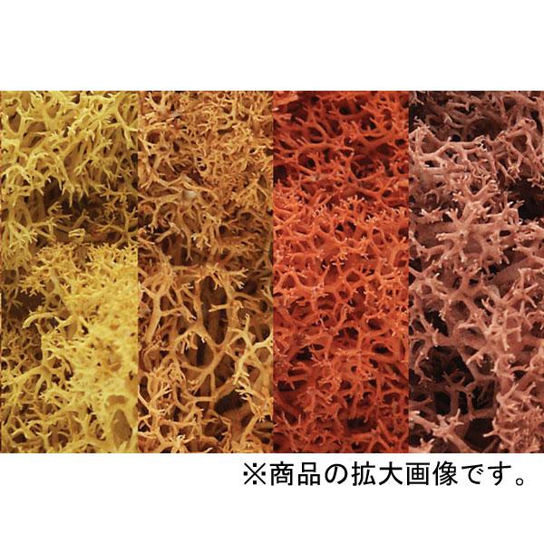天然素材 【ライケン】  オータム・ミックス(紅葉) :ウッドランド 素材 ノンスケール L165