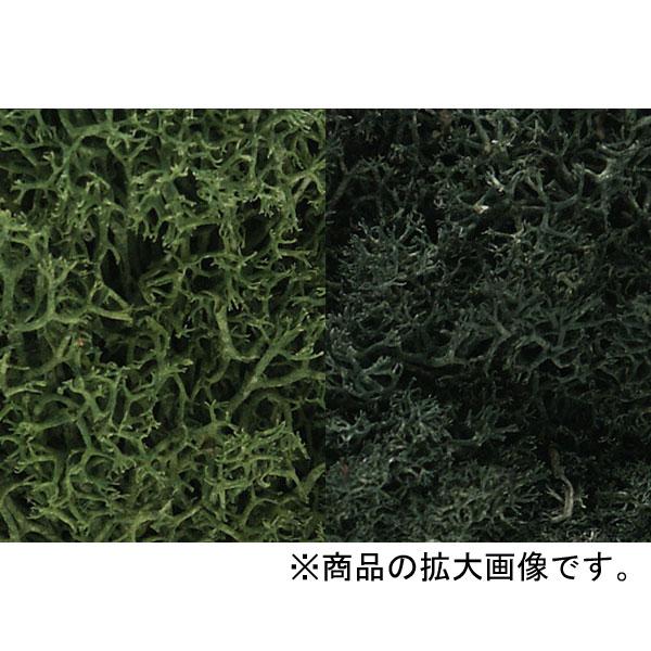 天然素材 【ライケン】  ダーク・グリーン・ミックス(森林) [ラージバッグ] :ウッドランド 素材 ノンスケール L168