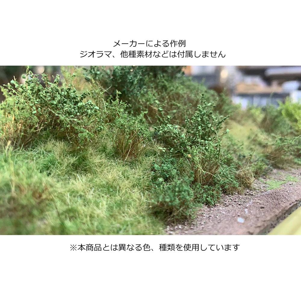 茂みC 株タイプ 全高40mm ミディアムグリーン 10株 :マルティン・ウエルベルク ノンスケール WB-SCMG