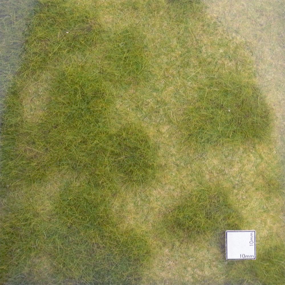 芝生シート リアリスティック・ワイルドグラス 【春の草原】 :ヘキ 素材 ノンスケール 1841