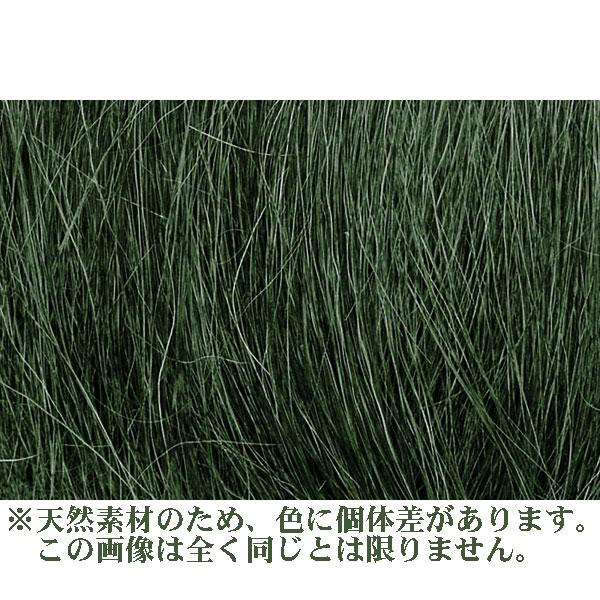 繊維系素材 【フィールドグラス】 ミディアム・グリーン(緑) :ウッドランド 素材 ノンスケール FG174