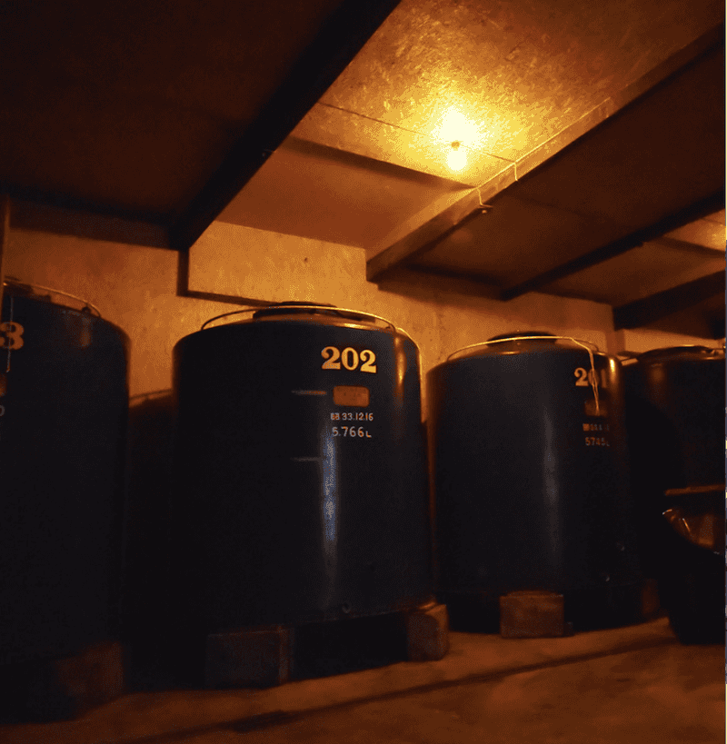 陸奥八仙 V1116 ワイン酵母仕込み 純米吟醸酒 [1.8L]