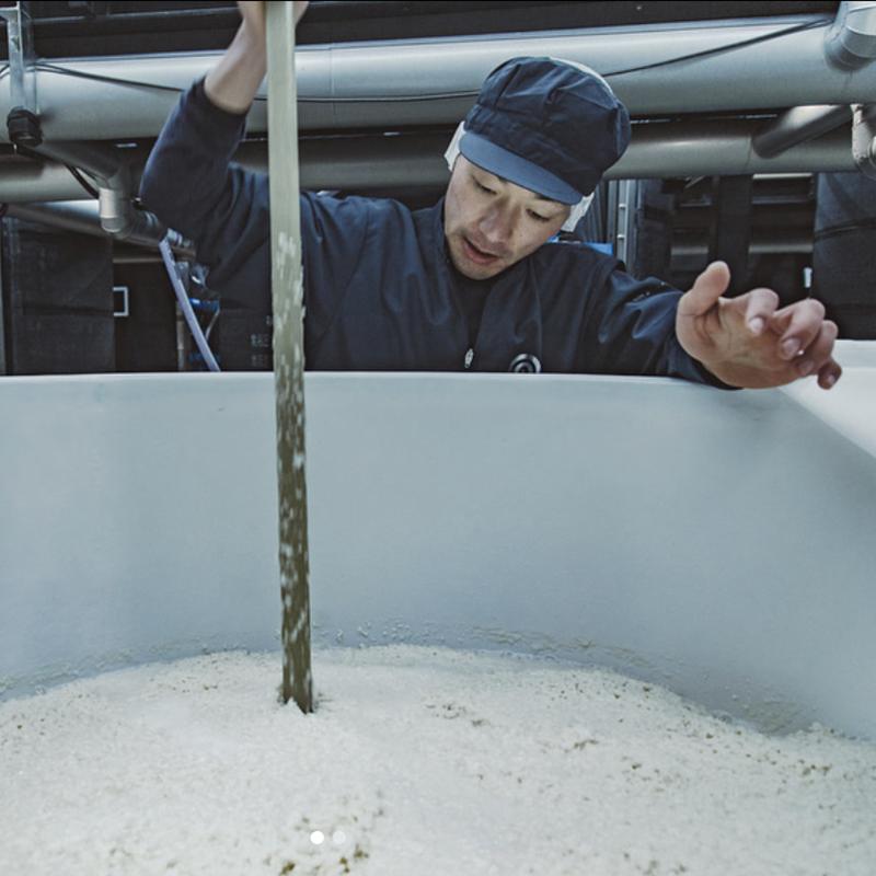 農口 のぐち 純米酒 [1.8L]