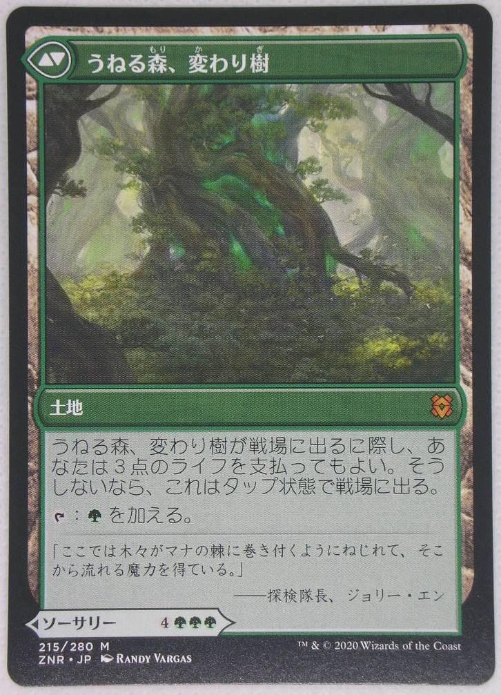 変わり樹の共生/Turntimber Symbiosis ZNR日本語 両面カード