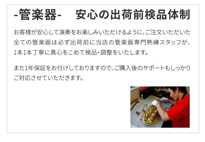Soleil フルート 初心者入門セット SFL-1【ソレイユ SFL1 管楽器】