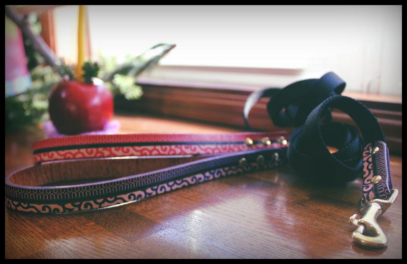 おなまえ首輪 名入れ・電話番号 グラフィックプリント 本革首輪 真鍮無垢金具 サイズSS〜L ベルト幅30mm #33001-1