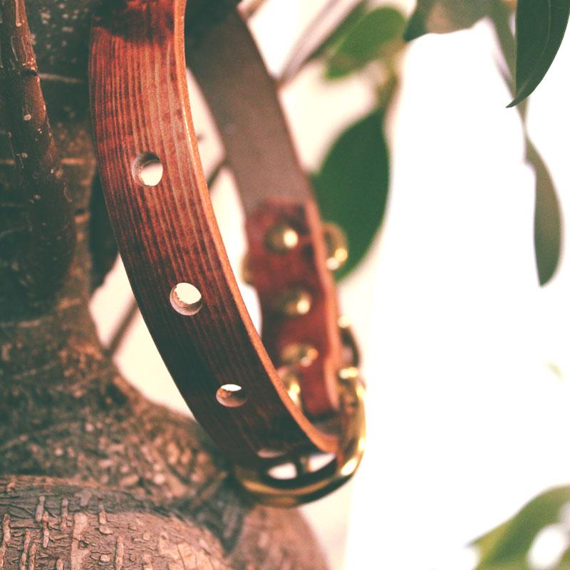 NUMEPHIC ヌメ革グラフィック首輪 木目本革/真鍮無垢金具 サイズSS〜L ベルト幅16mm #23414