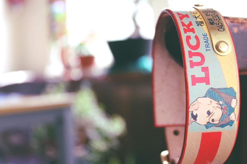 彫刻真鍮プレート付 おなまえ首輪 名入れ・電話番号 グラフィックプリント『Lucky Dog/福犬印』 本革首輪 真鍮無垢金具 サイズSS〜L ベルト幅30mm #33044
