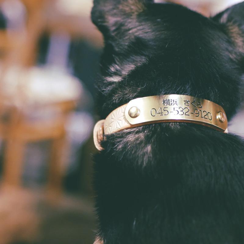 [#A8893]サクラ犬具製作所 本革 麻の葉文様 和柄型押し模様首輪  日本製
