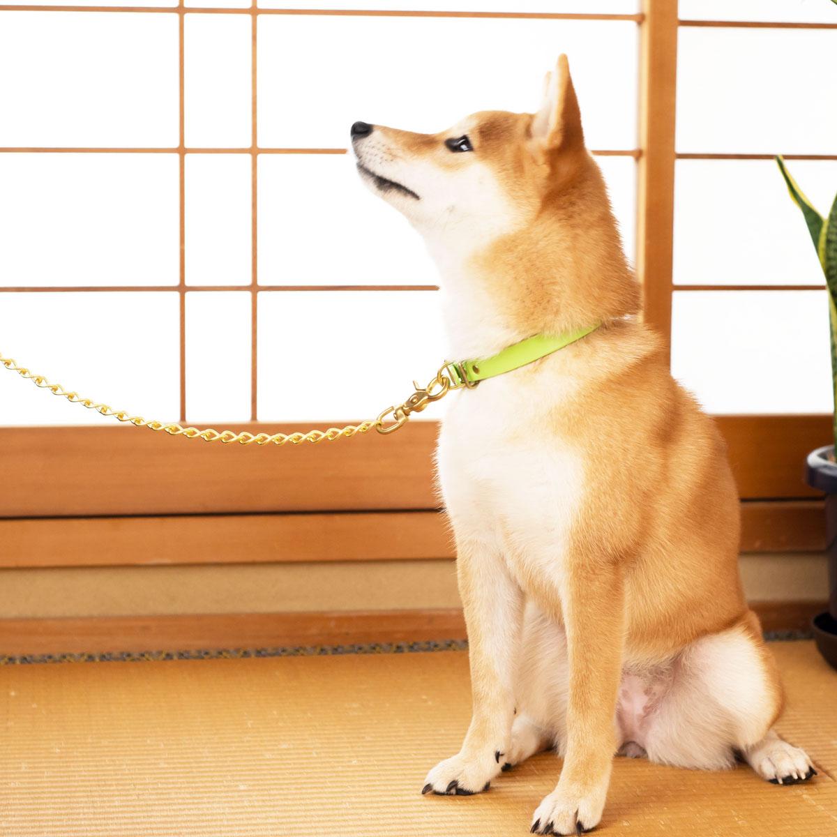 [#KARAKUSA]サクラ犬具製作所 本革 唐草模様首輪 からくさ 日本製