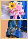 ラブライブ コスプレ lovelive sunshine Just Believe 中須かすみ 風 虹ヶ咲学園スクールアイドル同好会 メイド コスチューム コミケ y2994