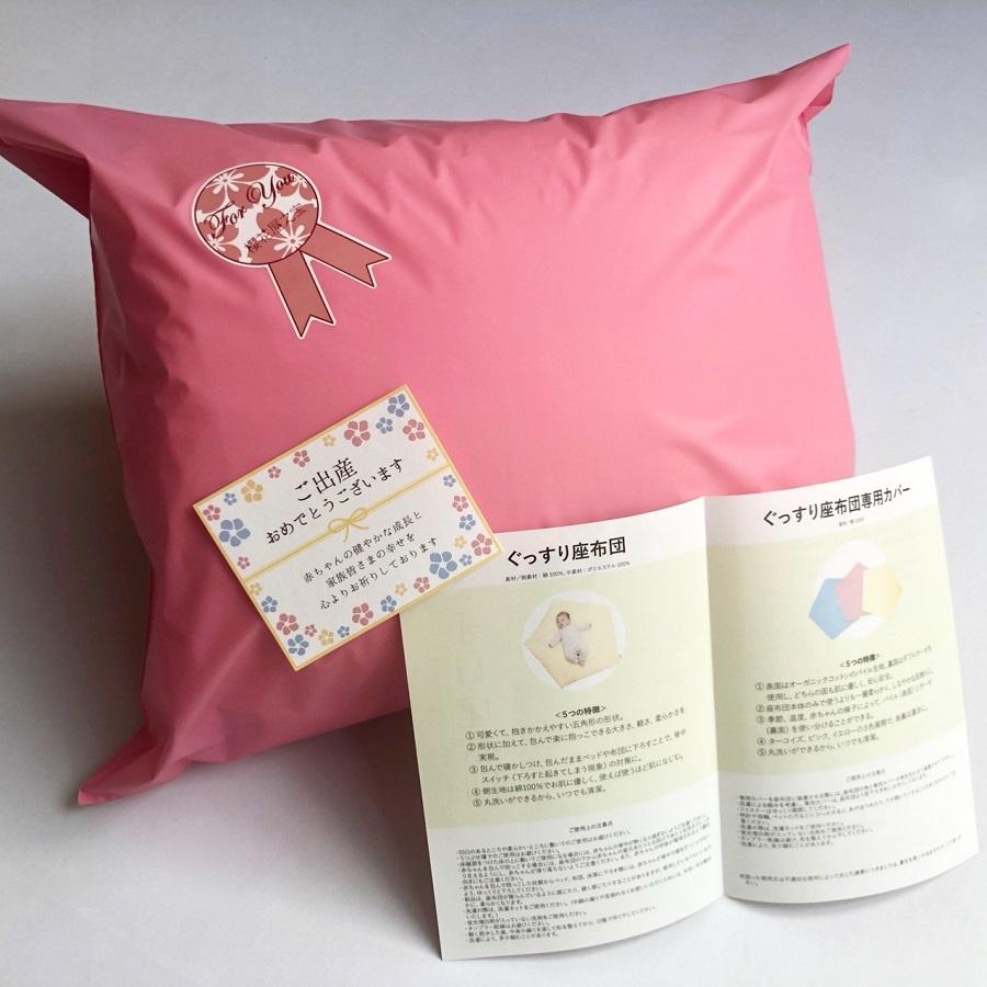 【セット】ぐっすり座布団本体&専用カバー(ターコイズ)