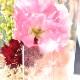 母の日お皿お花セット-2