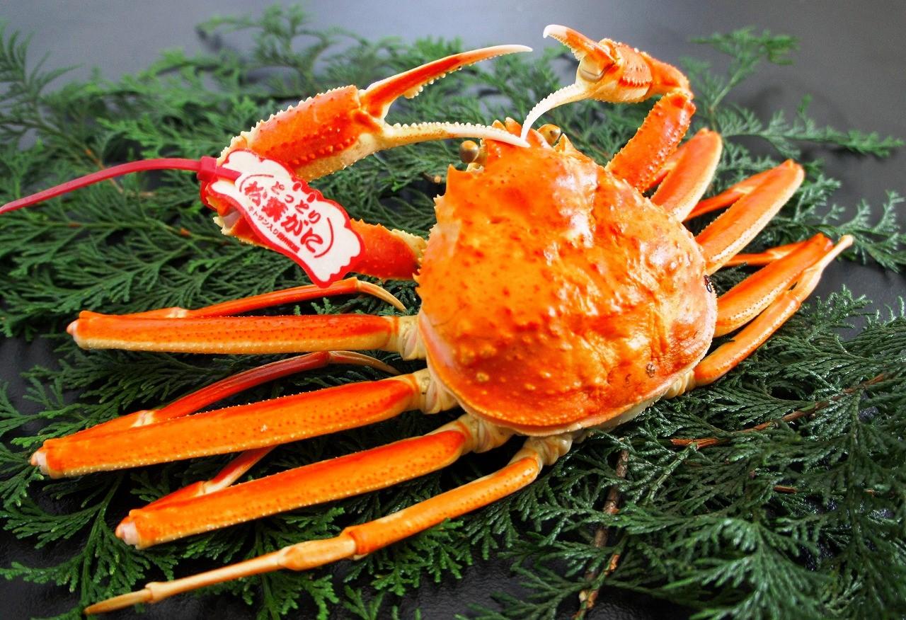 【送料無料】鳥取県産 茹で松葉がに[中]400g×3尾 松葉蟹 ボイル 冷凍配送 ※ほかの商品との同梱不可