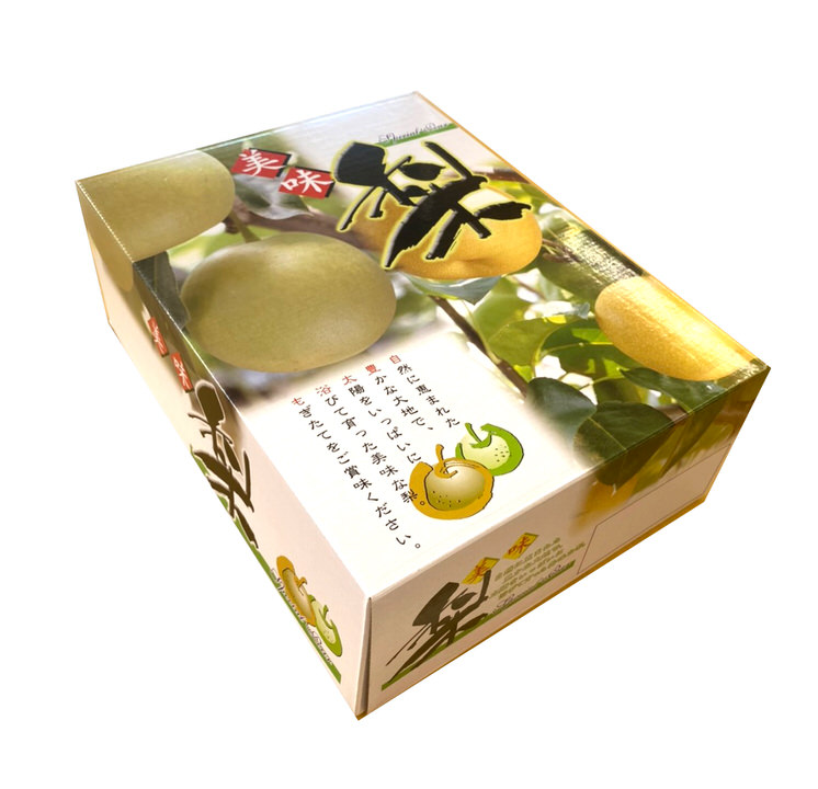 【季節のお取り寄せギフト】鳥取県産 梨(二十世紀梨)2.5kg(5〜8個)