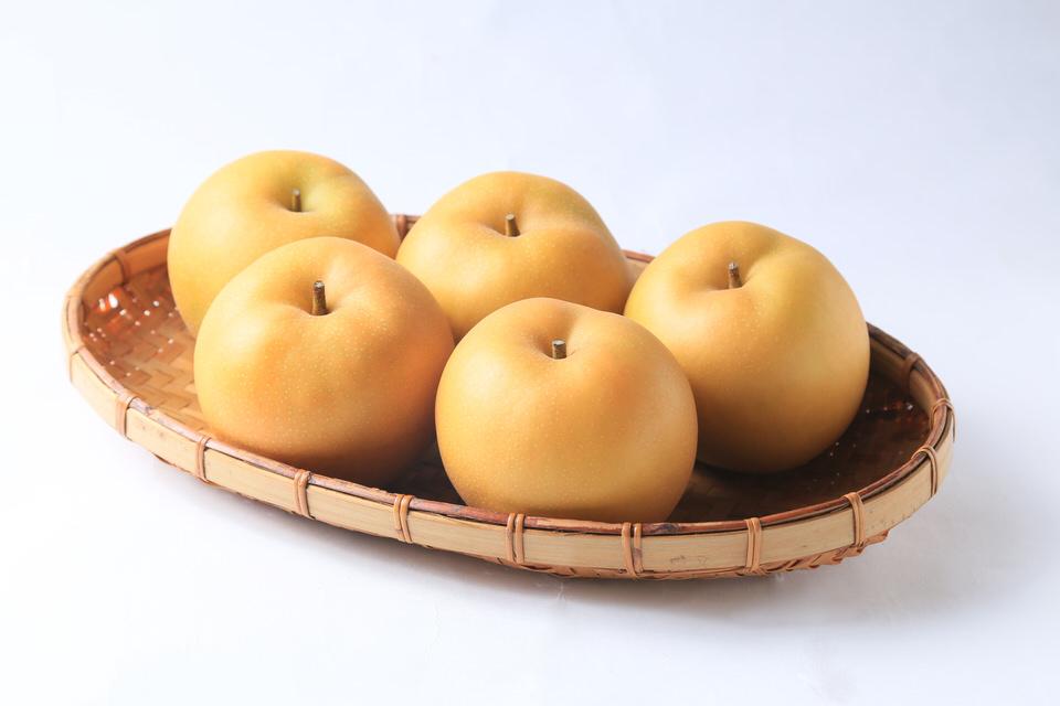 【季節のお取り寄せギフト】鳥取県産 梨(新甘泉)2.5kg(5〜6個)