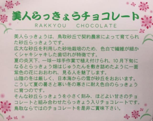 美人らっきょうチョコレート 12個