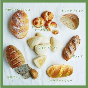 【贈答品に最適】ブナの恵みパンセット(サラの人気パン7種入り)