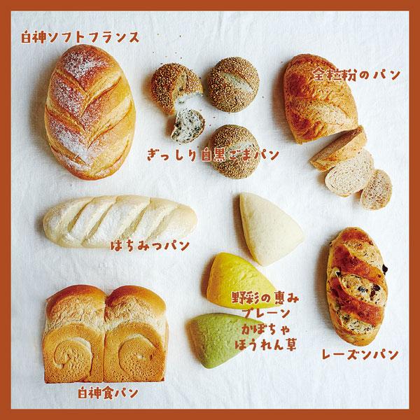 【贈答品に最適】白神の恵みパンセット(卵・乳不使用パン7種入り)