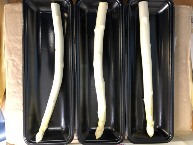 ホワイトアスパラガス「白い果実」規格外品(400g/約12~15本入)