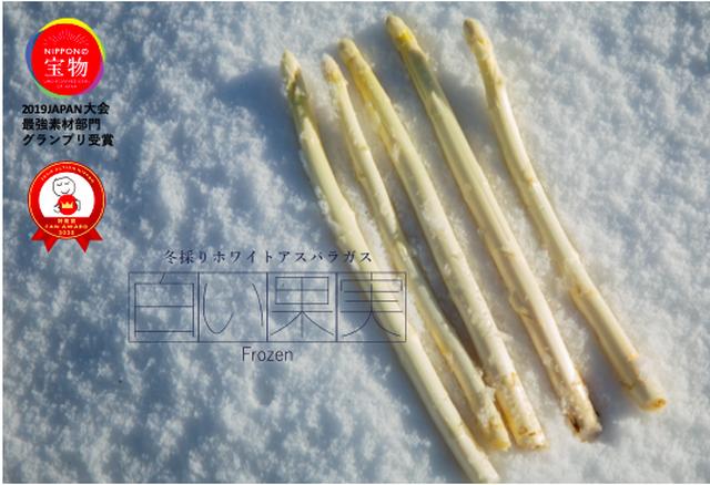 冬採りホワイトアスパラガス「白い果実」フローズン&特製オランデーズソースセット
