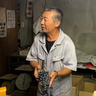 【人気商品】里山葡萄エール330ml 再販!