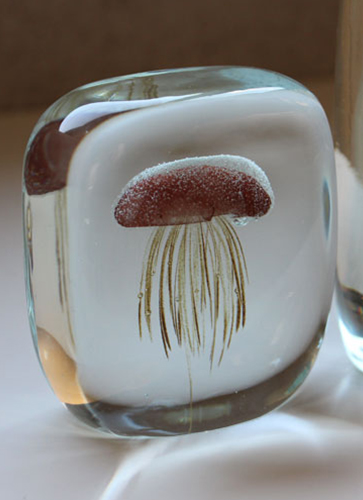 """Jellyfish Paper Weight """"Square"""""""