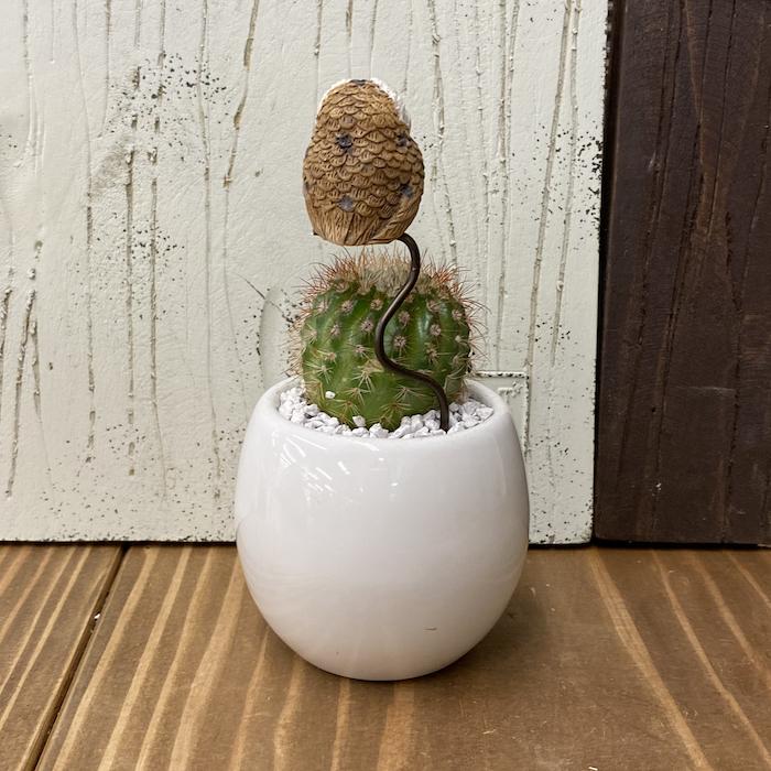 【受注生産品】ふくろう 丸サボテン sp-wb 観葉植物  さぼてん カクタス インテリア グリーン ミニチュア  かわいい 動物 フィギュア