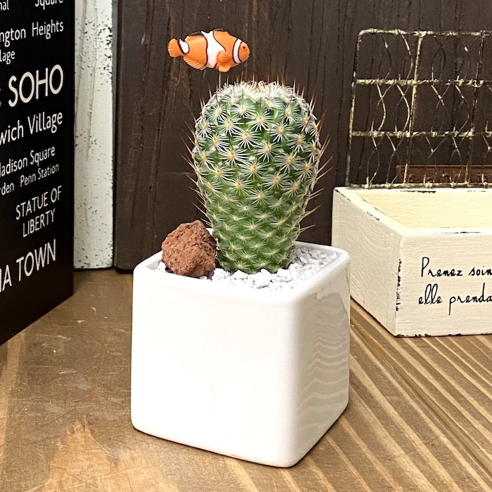【受注生産品】ポット2種類 クマノミ ニモ su-01kumanomi  観葉植物  夏 さぼてん カクタス インテリア グリーン ミニチュア  かわいい 動物 フィギュア