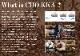 【無料】サンパウロコーヒー通販カタログ 2020〜2021年版