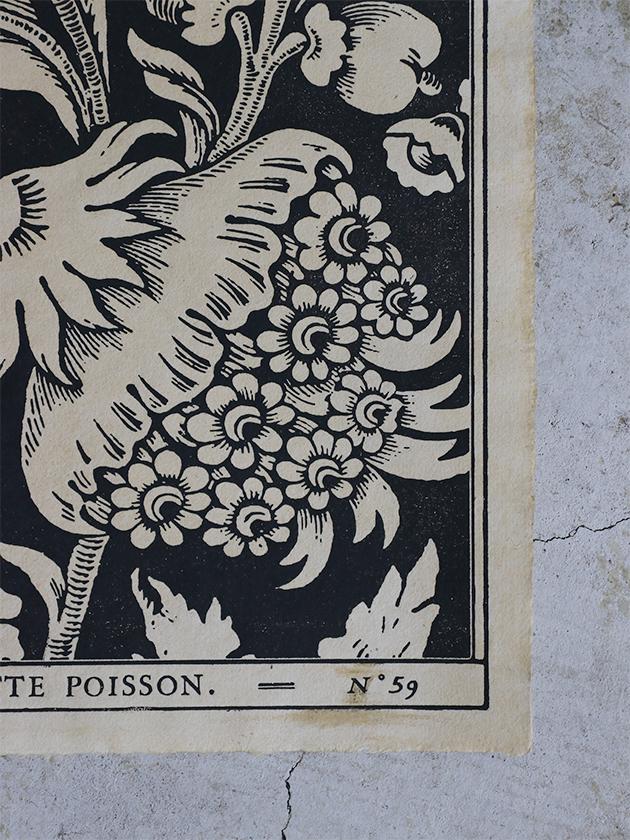 Antoinette Poissonドミノペーパー59C