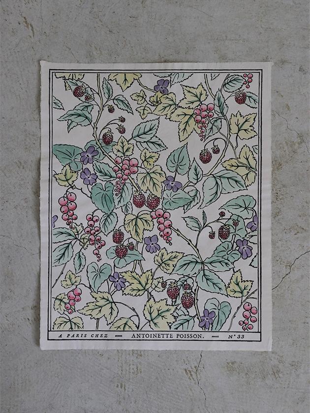 Antoinette Poissonドミノペーパー33A 5色