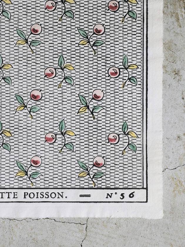 Antoinette Poissonドミノペーパー56A