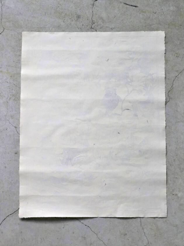 Antoinette Poissonドミノペーパー52D 51.5 x 66cm