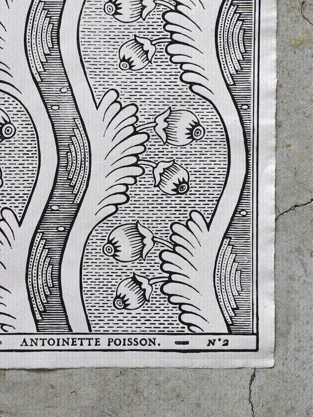 Antoinette Poissonドミノペーパー2B