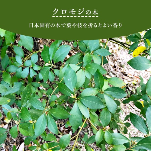 篠山精油 アロマスプレー 【 クロモジ   30ml 】1本 マスクスプレー
