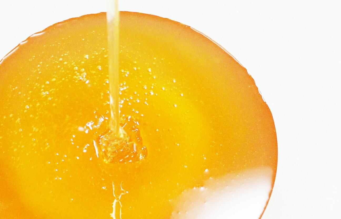 【丹波栗 500g】 丹波篠山で採れた100%天然の生ハチミツ 篠山蜂蜜