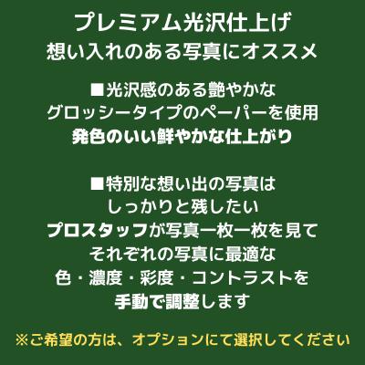プリ放題プランA(50枚まで)