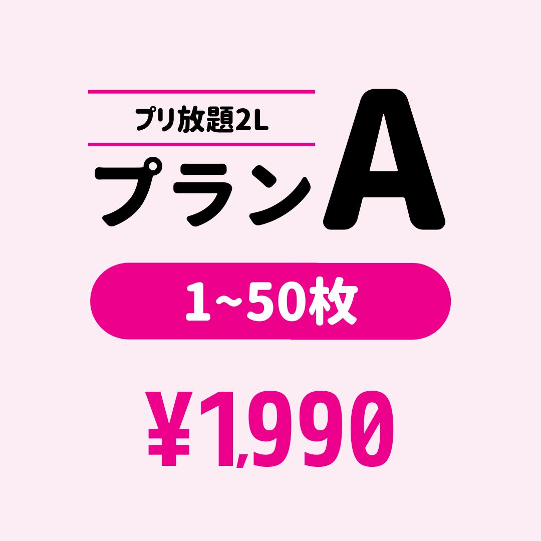 プリ放題2L プランA(50枚まで)