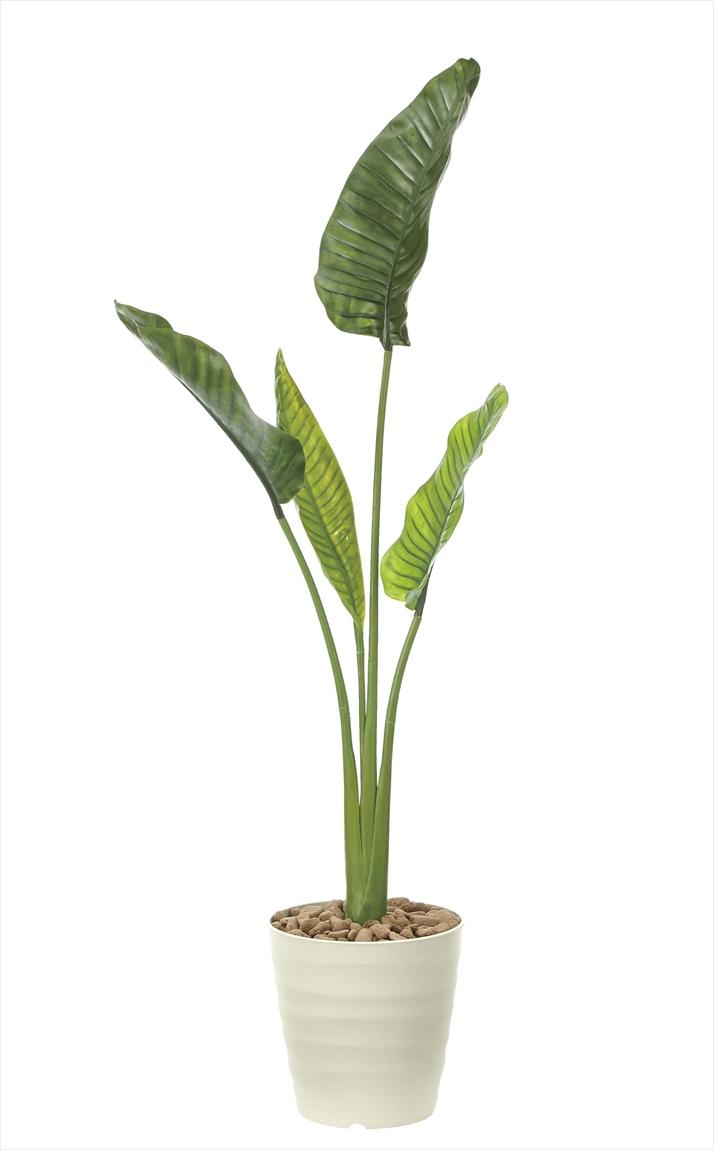 観葉植物 インテリアグリーン フェイク 人工観葉植物 光触媒 オーガスタM1.6(ポリ性) 《アートグリーン》