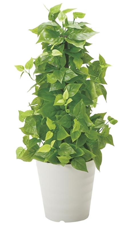 観葉植物 インテリアグリーン フェイク 人工観葉植物 光触媒 ポ−ルライムポトス  《アートグリーン》