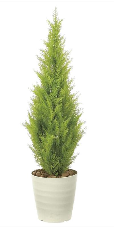 観葉植物 インテリアグリーン フェイク 人工観葉植物 光触媒 ゴールドクレスト1.3(ポリ性) 《アートグリーン》